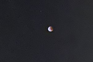 A shot of the moon!
